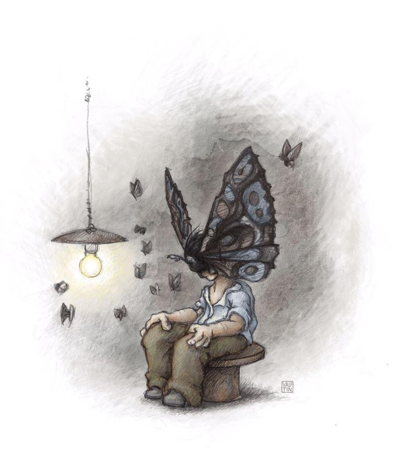 Papillons noirs